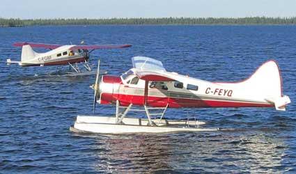 DHC Beaver